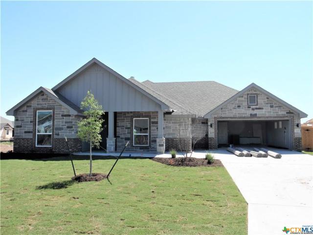 2509 Turtle Dove Drive, Temple, TX 76502 (MLS #374577) :: Vista Real Estate