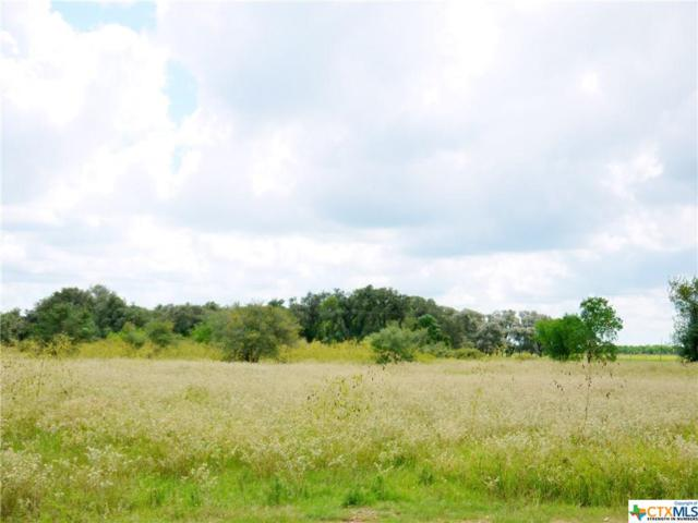 Tract 25 PH 2 WC Ran Sumac Road, Victoria, TX 77904 (#374593) :: Realty Executives - Town & Country