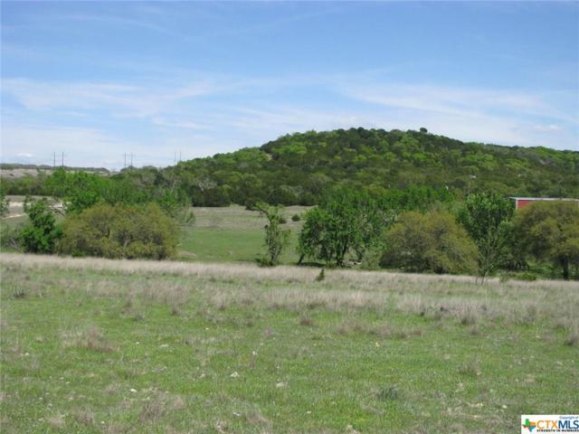 26002 N Us Highway 281, Evant, TX 76525 (MLS #374676) :: Magnolia Realty