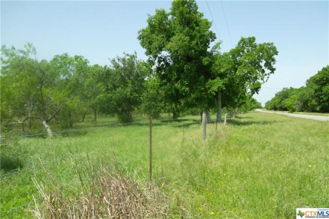 0 Fm 1351, Goliad, TX 77963 (MLS #374814) :: The i35 Group