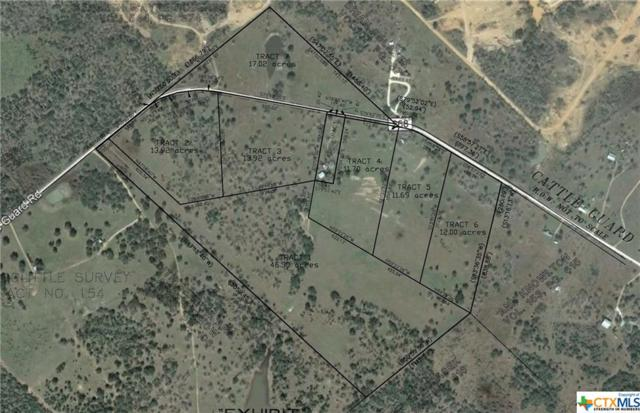 3445 Cattle Guard Road, Yoakum, TX 77995 (MLS #374819) :: The Zaplac Group