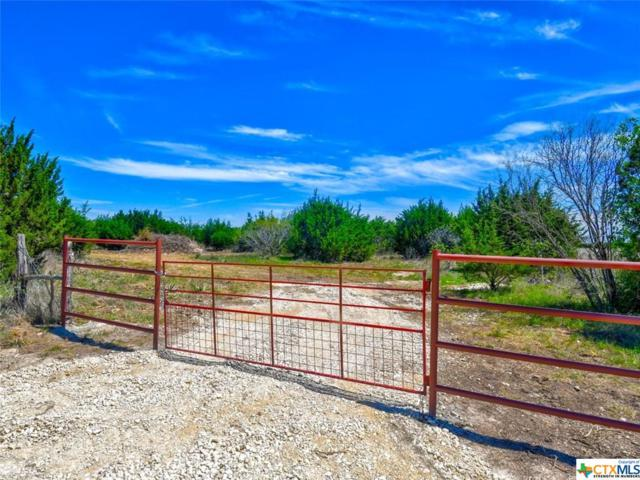 00 County Road 2699 Tract 1, Lometa, TX 76853 (MLS #374845) :: The i35 Group