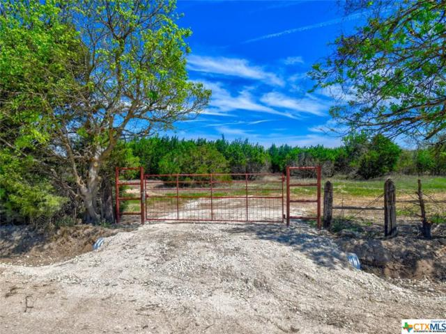 00 County Road 2699 Tract 3, Lometa, TX 76853 (MLS #374849) :: The i35 Group