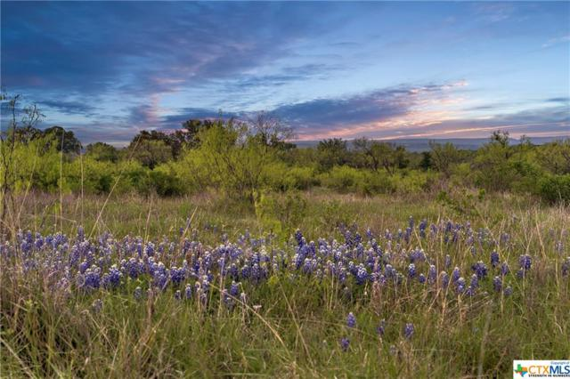 TBD Lot 7B Rockvale Lane, Spicewood, TX 78669 (#374927) :: Realty Executives - Town & Country