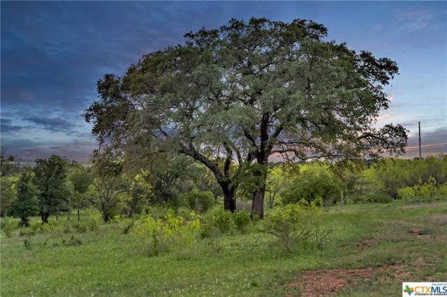 TBD Lot 11B Rockvale Lane, Spicewood, TX 78669 (#374929) :: Realty Executives - Town & Country