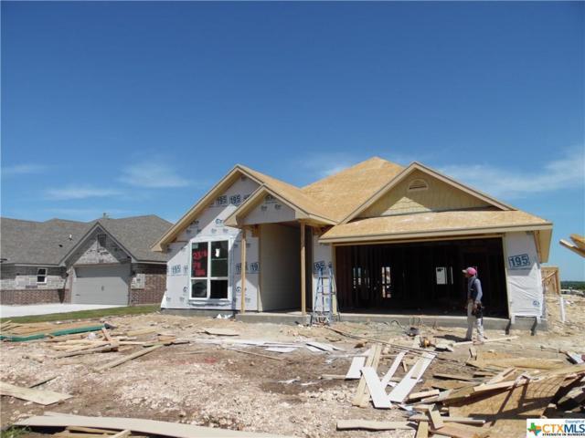 2513 Turtle Dove Drive, Temple, TX 76502 (MLS #374939) :: Vista Real Estate