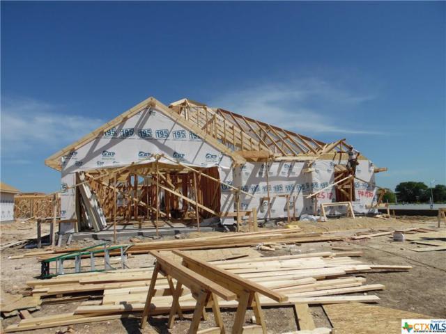 2517 Turtle Dove Drive, Temple, TX 76502 (MLS #374944) :: Vista Real Estate