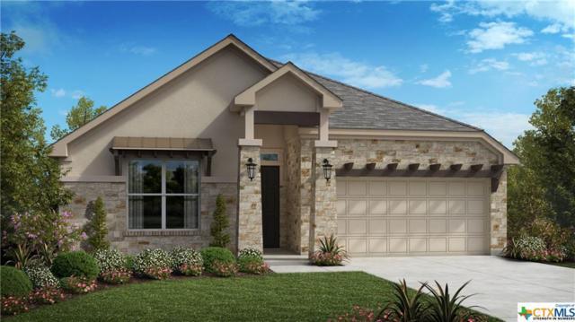1133 E Nutmeg Trail, New Braunfels, TX 78132 (MLS #374973) :: Erin Caraway Group