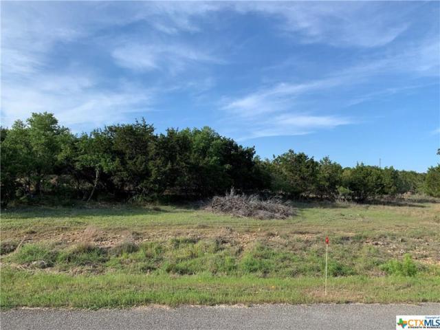 744 Stallion Estates Drive, Spring Branch, TX 78070 (MLS #375025) :: Vista Real Estate