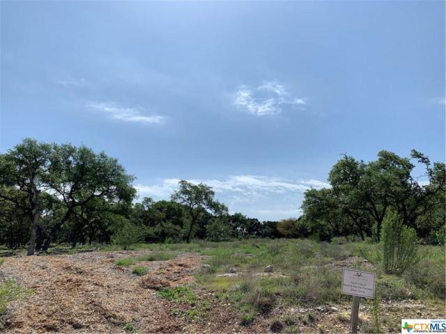 1974 Pinotage, New Braunfels, TX 78132 (MLS #375048) :: Erin Caraway Group