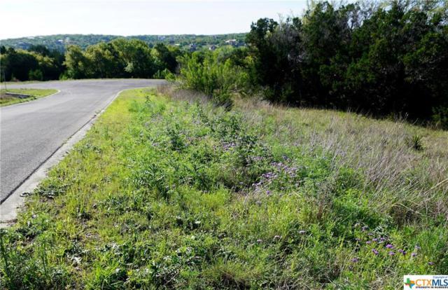 220 Sendera Way, Canyon Lake, TX 78133 (MLS #375062) :: Erin Caraway Group