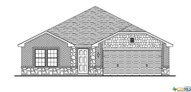 6504 Catherine Drive, Killeen, TX 76542 (MLS #375101) :: The i35 Group