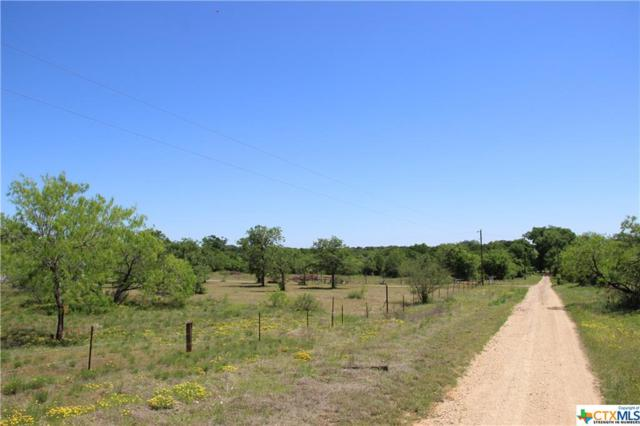 1022 Twin Creeks, Seguin, TX 78155 (MLS #375199) :: The i35 Group