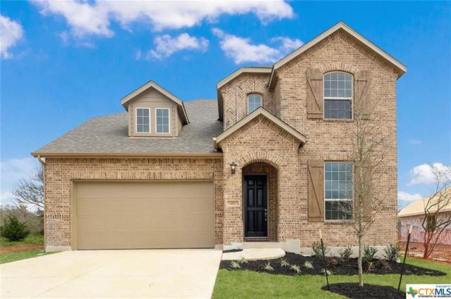 117 Emerald Garden Road, San Marcos, TX 78666 (#375246) :: Realty Executives - Town & Country