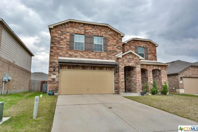 1207 Cozy Creek Drive, Temple, TX 76502 (MLS #375260) :: Vista Real Estate