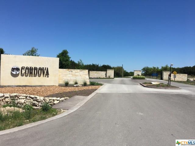 2124 Senora Ridge, Canyon Lake, TX 78133 (MLS #375300) :: Erin Caraway Group