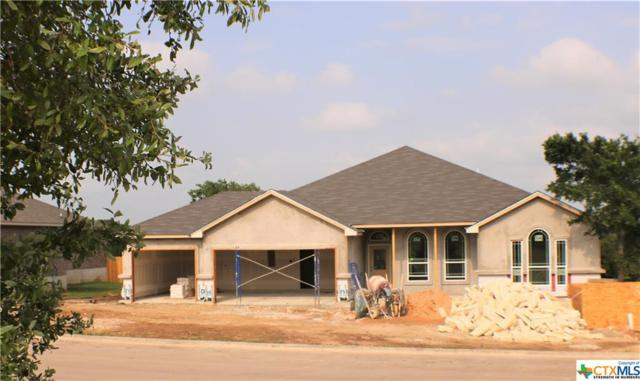5517 Imogen Drive, Belton, TX 76513 (MLS #375329) :: Vista Real Estate