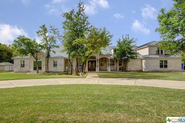 4074 Tribute Drive, Belton, TX 76513 (MLS #375342) :: Vista Real Estate