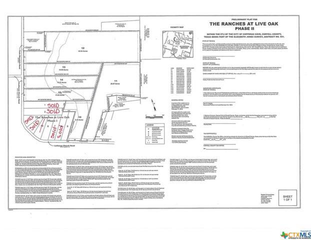 Tract 10 Lutheran Church Road, Copperas Cove, TX 76522 (MLS #375354) :: Vista Real Estate