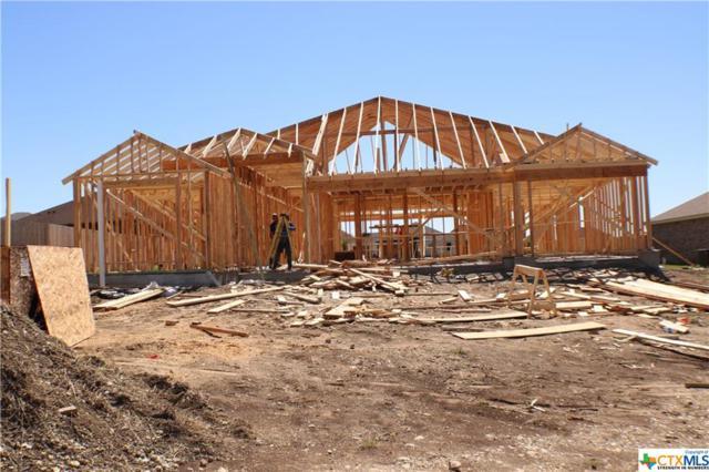 105 Button Bush Court, Nolanville, TX 76559 (MLS #375368) :: Vista Real Estate