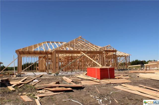 228 Slippery Elm Drive, Nolanville, TX 76559 (MLS #375370) :: Vista Real Estate