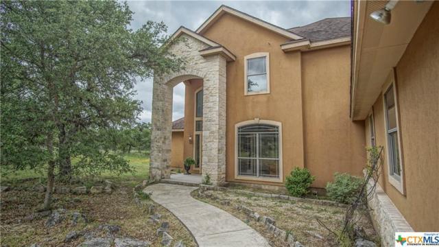 737 River Chase Drive, New Braunfels, TX 78132 (MLS #375404) :: Berkshire Hathaway HomeServices Don Johnson, REALTORS®