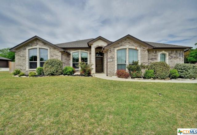 850 Ridgeoak Drive, Belton, TX 76513 (MLS #375440) :: Vista Real Estate