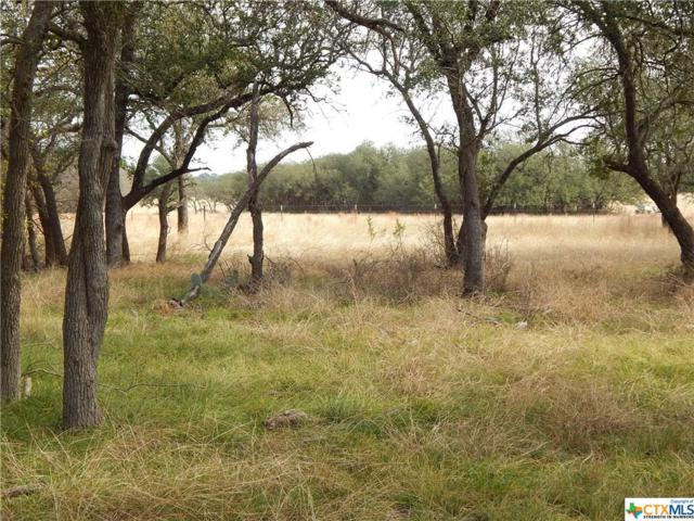 TBD Lot A County Road 225, Florence, TX 76527 (MLS #375444) :: The Graham Team