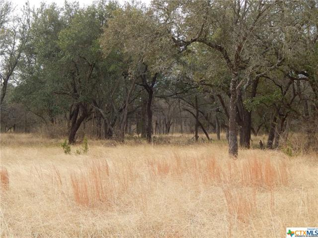 TBD Lot B County Road 225, Florence, TX 76527 (MLS #375449) :: The Graham Team