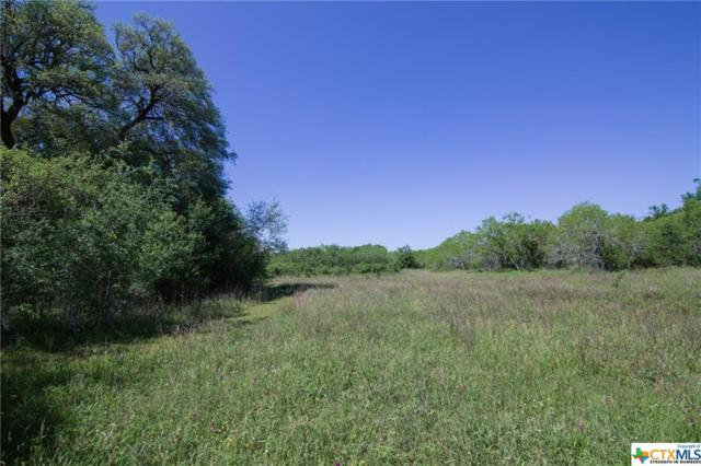 1033 County Road 408, Waelder, TX 78959 (MLS #375479) :: The i35 Group
