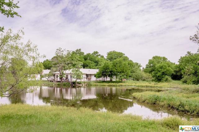 6006 Pat Cole Road, Temple, TX 76502 (MLS #375535) :: Vista Real Estate