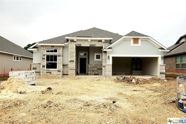 590 Mission Hill Run, New Braunfels, TX 78132 (MLS #375572) :: Erin Caraway Group