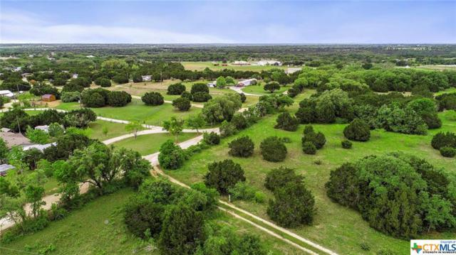 00 County Rd 277, Liberty Hill, TX 78642 (#375611) :: 12 Points Group