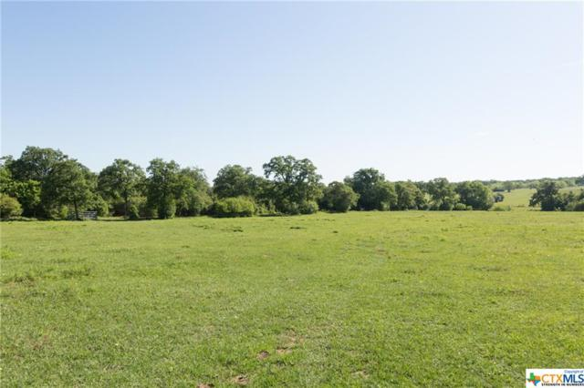 14634 I-10 West Access Road, Harwood, TX 78632 (MLS #375619) :: The i35 Group