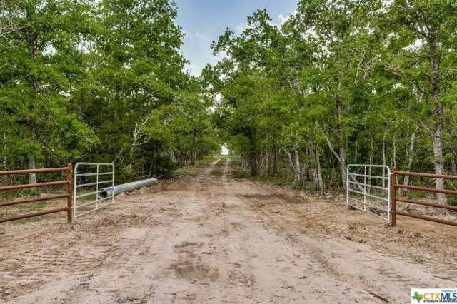 10078 Fm 682 Tract 2, Yoakum, TX 77995 (MLS #375755) :: RE/MAX Land & Homes