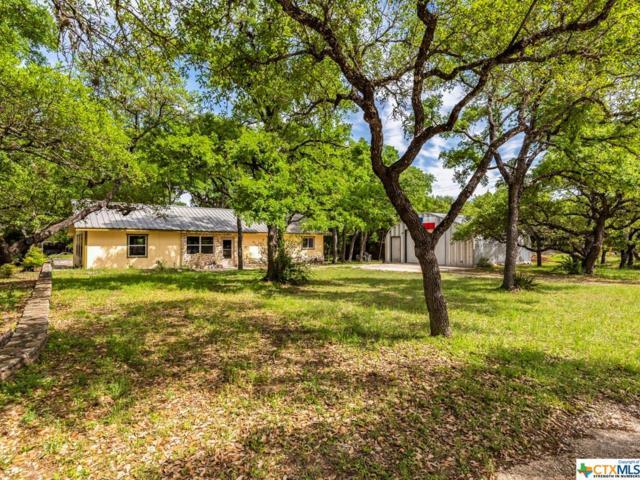 28 W Inwood Forest Drive, Wimberley, TX 78676 (MLS #375769) :: Carter Fine Homes - Keller Williams Heritage