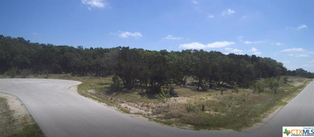 2012 Brunello, New Braunfels, TX 78132 (MLS #375788) :: Vista Real Estate