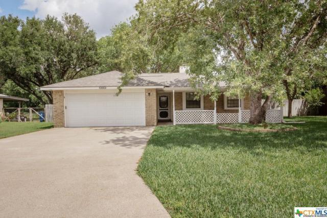 1359 Gay Meadow Lane, Goliad, TX 77963 (MLS #375932) :: Kopecky Group at RE/MAX Land & Homes