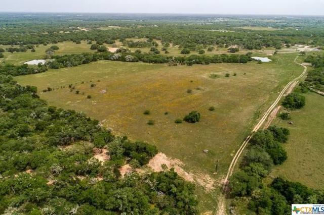 10080 Fm 682, Yoakum, TX 77995 (MLS #375949) :: RE/MAX Land & Homes
