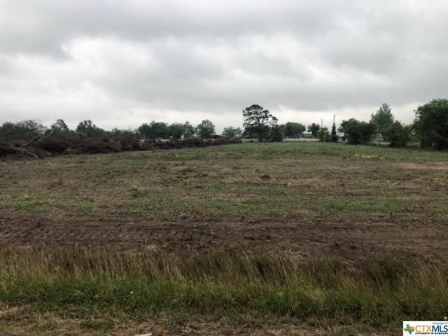 352 Haynes Rd, Victoria, TX 77904 (MLS #375965) :: Kopecky Group at RE/MAX Land & Homes