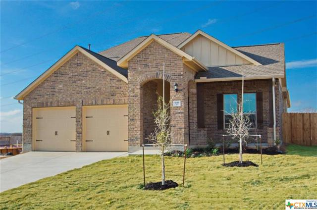 949 Foxbrook Way, Cibolo, TX 78108 (MLS #376104) :: The Graham Team