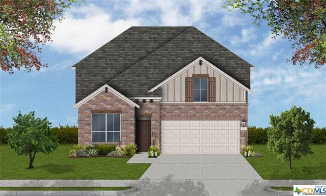 672 Colt Trail, Schertz, TX 78154 (MLS #376122) :: The Graham Team