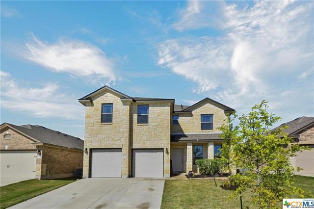 5342 Cicero Drive, Belton, TX 76513 (MLS #376244) :: Brautigan Realty