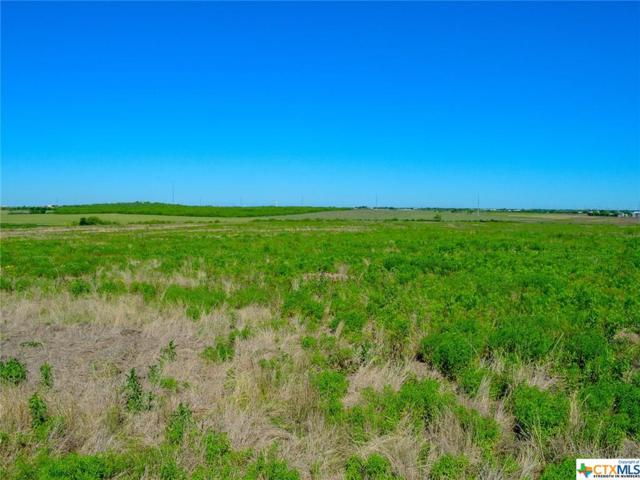 2000 Wosnig Rd, Marion, TX 78124 (#376275) :: Realty Executives - Town & Country