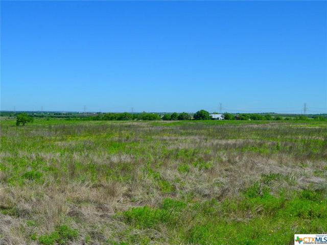 2100 Wosnig Rd, Marion, TX 78124 (#376279) :: Realty Executives - Town & Country