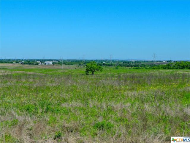 2214 Wosnig Rd, Marion, TX 78124 (#376281) :: Realty Executives - Town & Country