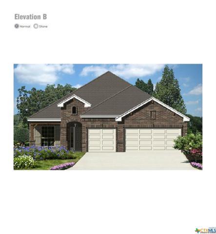 3622 Conrads Cloud, New Braunfels, TX 78130 (MLS #376301) :: Erin Caraway Group