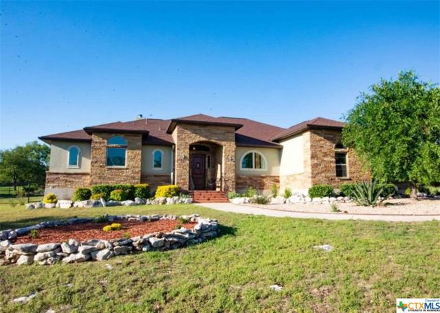 1208 Decanter Drive, New Braunfels, TX 78132 (MLS #376304) :: Erin Caraway Group