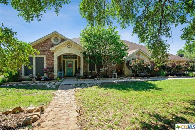 503 County Road 3351, Kempner, TX 76539 (MLS #376462) :: The Graham Team
