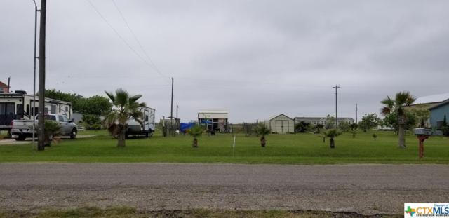00 Alamo Beach Ave, Port Lavaca, TX 77979 (MLS #376622) :: The Zaplac Group